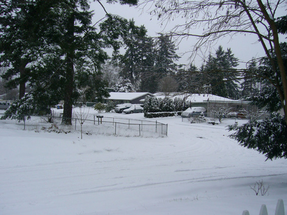 A snowy Tacoma neighborhood on the first day of winter