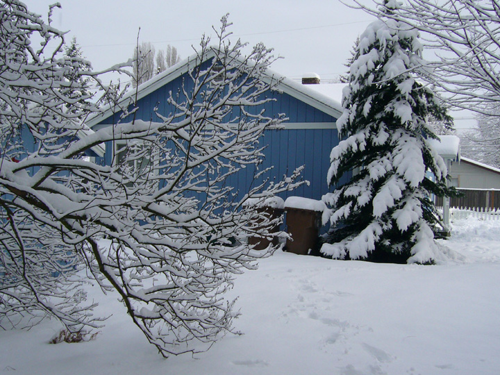 A beautiful, snowy day in Tacoma