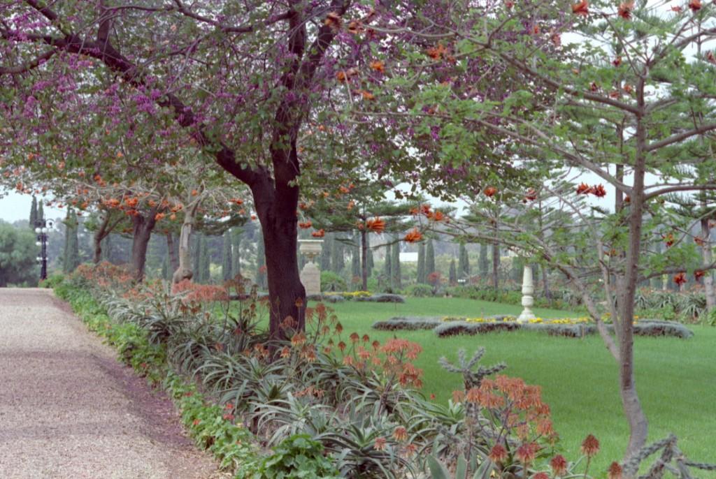 The garden at Bahji