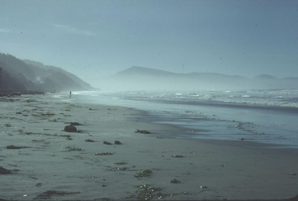 Trip 1978 November - 11 Oregon Coast copy
