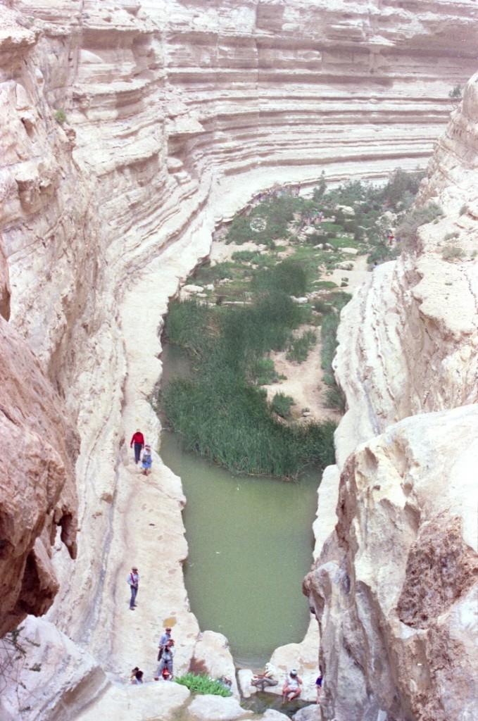 Avdat Canyon, Israel
